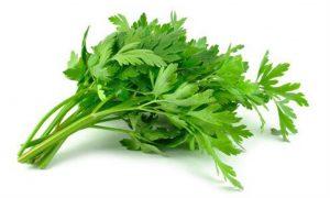 استفاده از گیاه جعفری برای درمان واریس