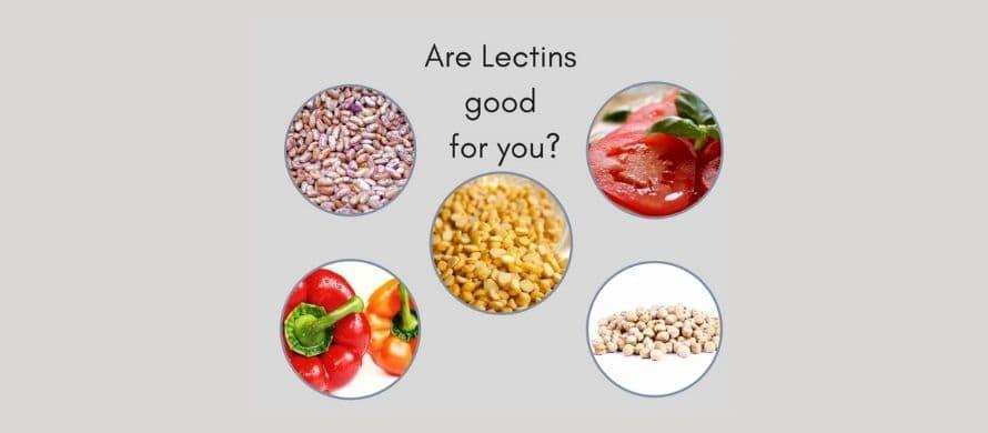لکتین ها، رابطی بین رژیم غذایی و گروه خونی