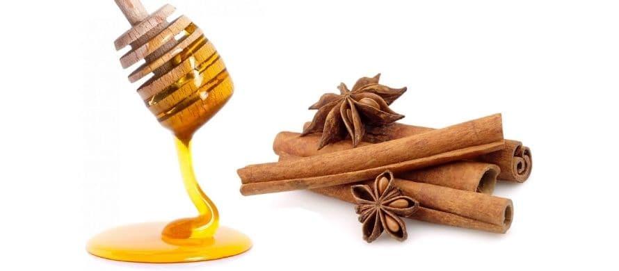 خواص عسل و دارچین در درمان زود انزالی
