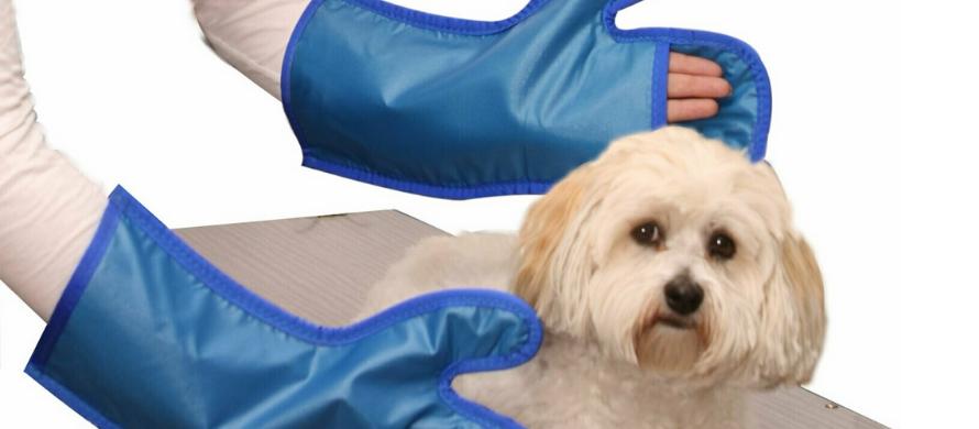 جمع بندی دستکش سربی چیست و کاربرد آن در رادیولوژی، سونوگرافی چیست؟